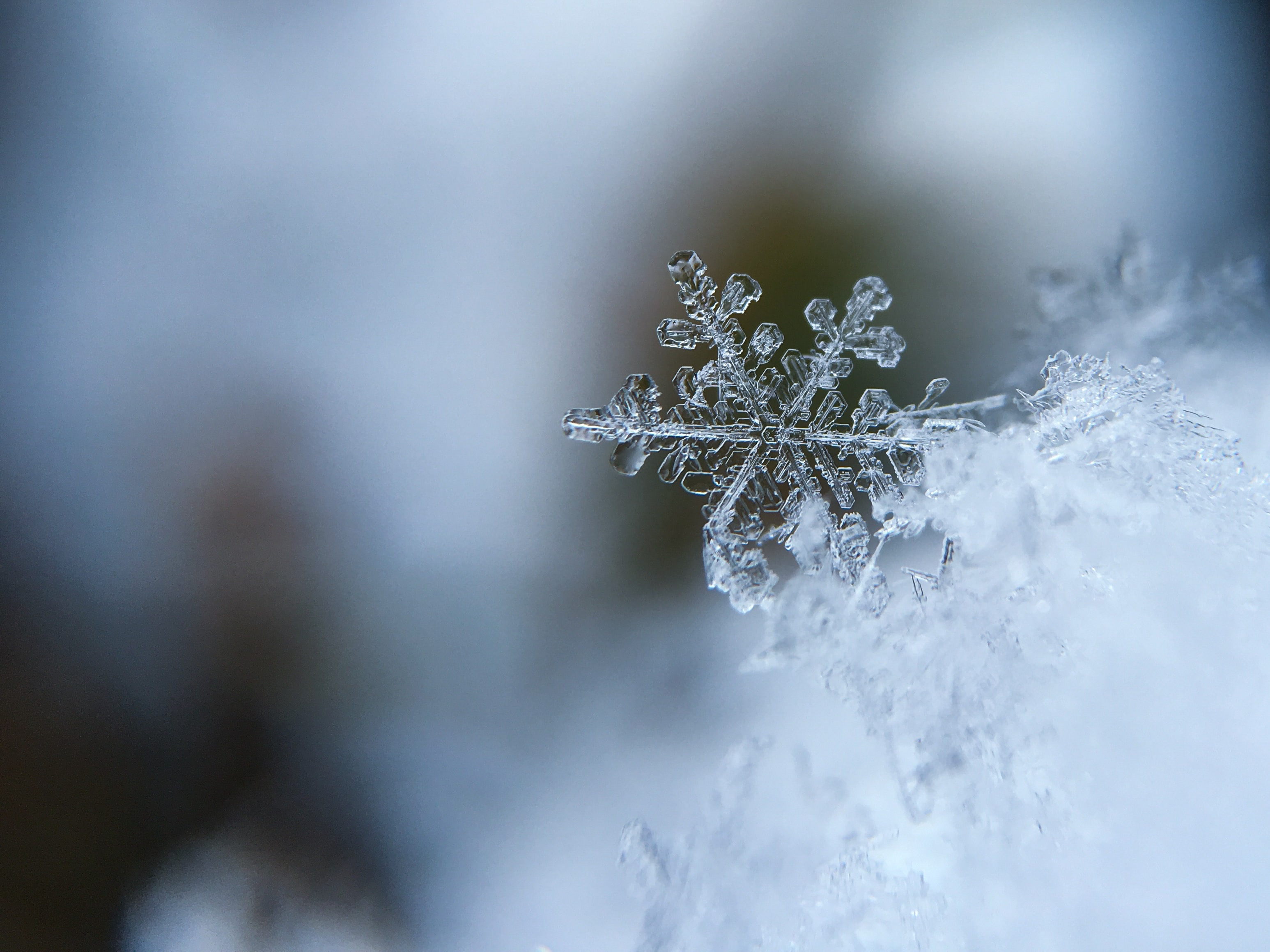 snowflake 6 & Fix